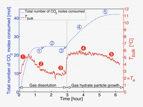 Time evolution of the temperature and the amount of CO2 consumed during the formation of CO2 hydrates in a stirred tank
